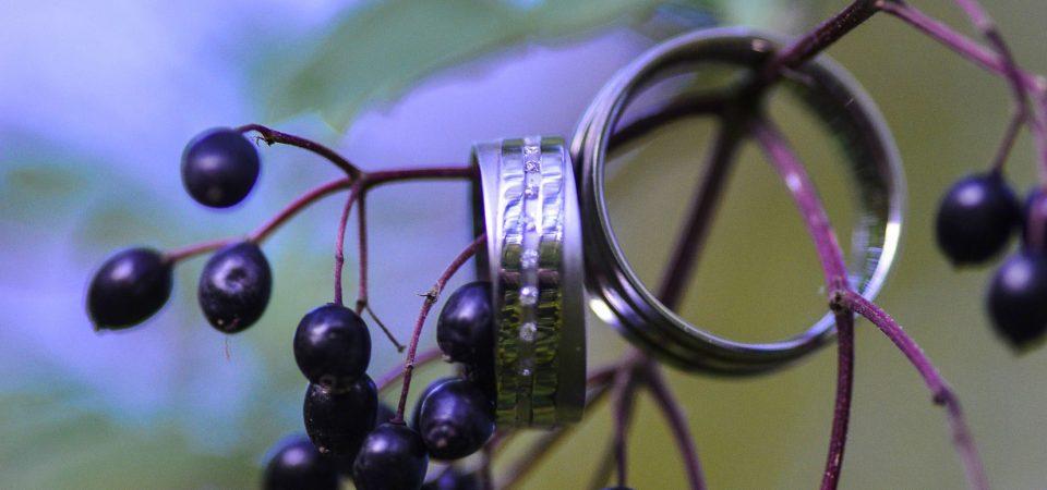 Hochzeitsringe auf Holunderzweig